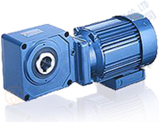 Bevel gear reducer motor