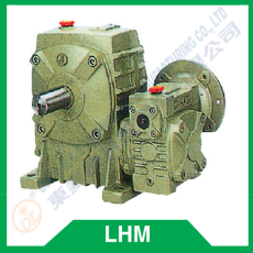 Worm reducer series LHM